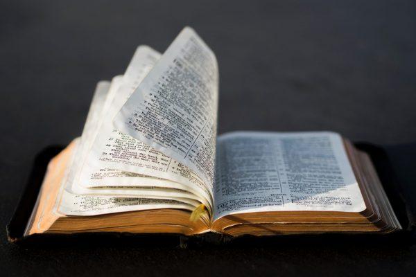 Afternoon Bible Break