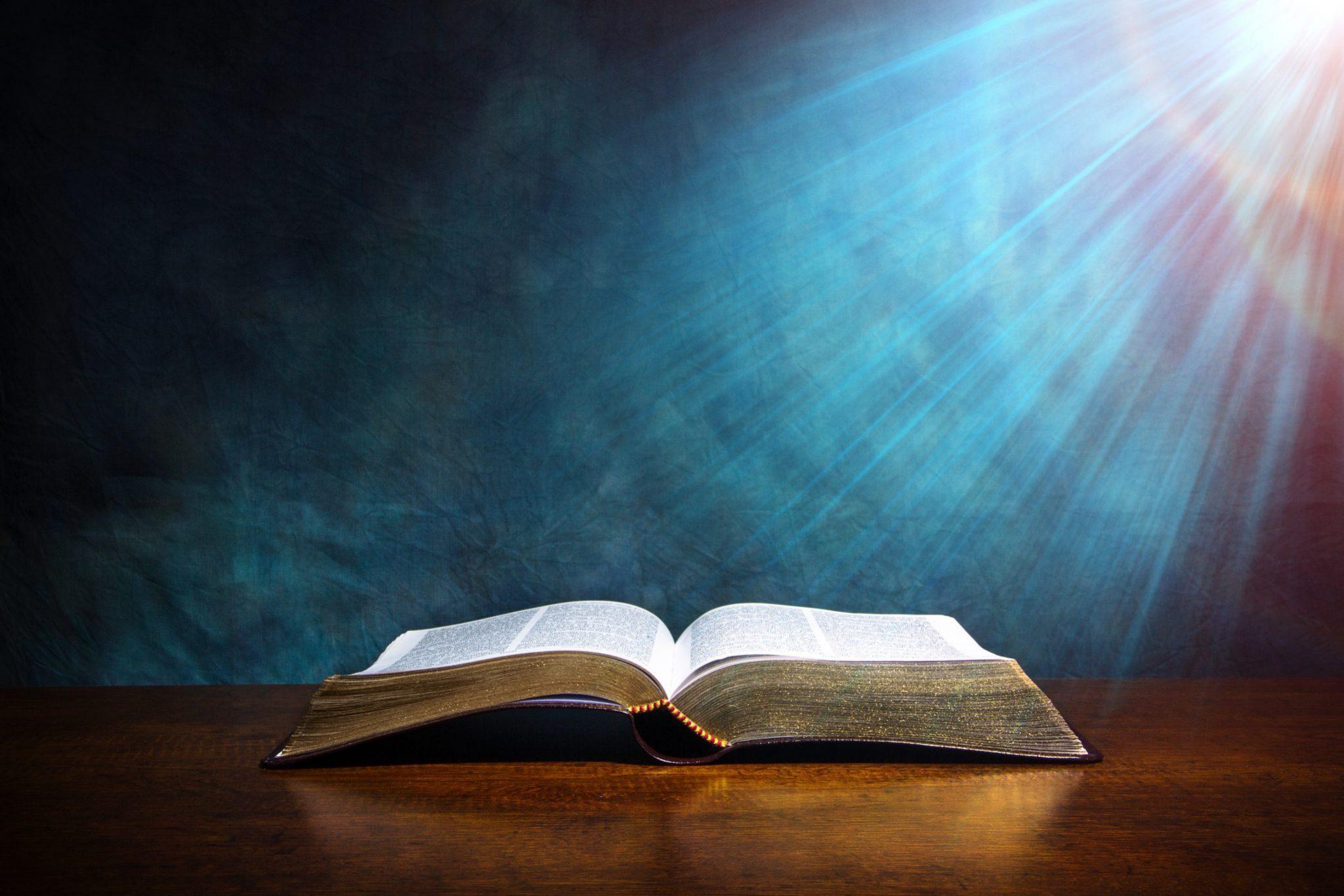 Little Rock Scripture Study (Starts January 8)